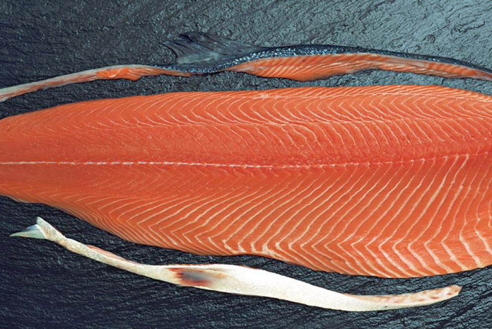 Cá hồi tươi phi lê nguyên má